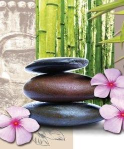 Fototapet med motivet: Blommor med Zen Stenar