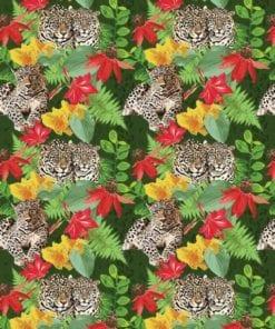 Fototapet med motivet: Djungel Cheetah