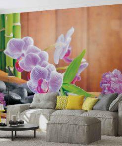 Fototapet med motivet: Blommor Orkidéer Zen