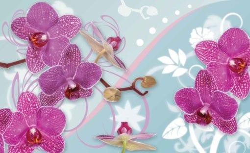Fototapet med motivet: Orkidé blommor mönstrar