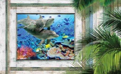 Fototapet med motivet: Delfiner Fisk