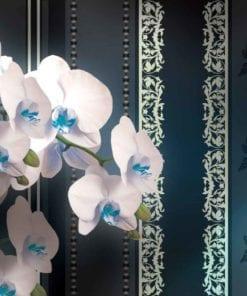 Fototapet med motivet: Blommor Blom Orkidéer Mönster
