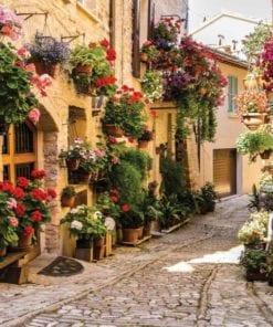 Fototapet med motivet: Mediteran med blommor