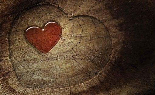 Fototapet med motivet: Hjärta Träd