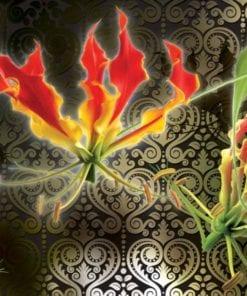 Fototapet med motivet: blommor blommor