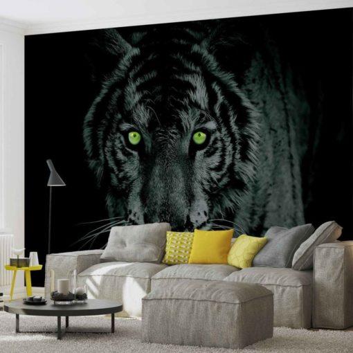 Fototapet med motivet: Tiger Djur