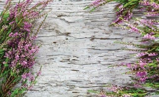 Fototapet med motivet: blommor Trä