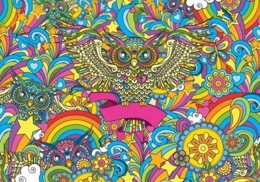 Fototapet med motivet: Färgglad Uggla Stjärnor Regnbåge Blommor