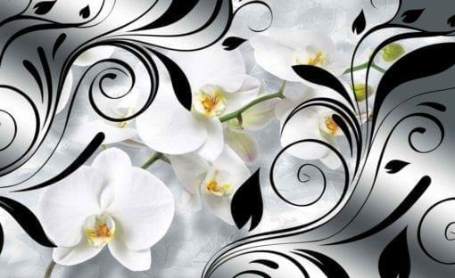 Fototapet med motivet: Blommor Orkidéer Abstrakt