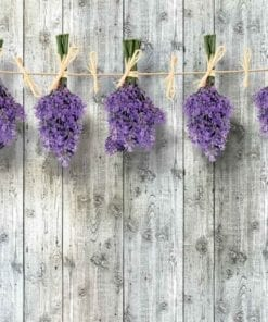 Fototapet med motivet: Trävägg Blommor Lavender