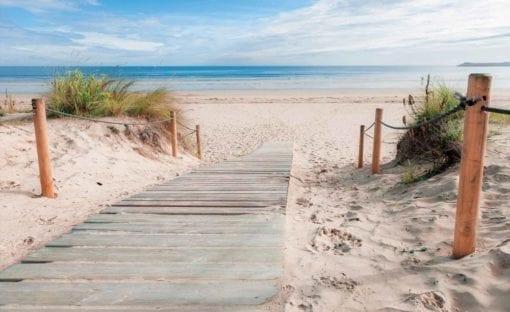 Fototapet med motivet: Gång Strand Sand Natur