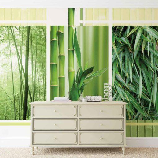 Fototapet med motivet: Bambu Skogsnatur