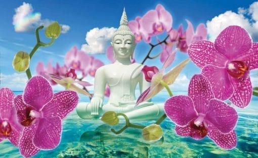 Fototapet med motivet: Zen blommor Orkidéer Buddha Vatten Himmel