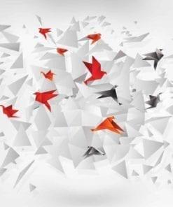 Fototapet med motivet: Explosion Sammanfattning Fåglar