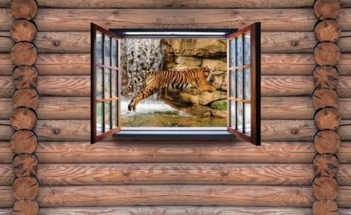 Fototapet med motivet: Utsikt Stuga Tiger Vatten