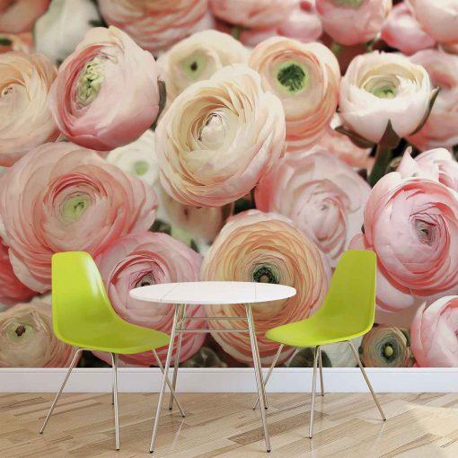 Fototapet med motivet: Blommor Pioner Färger