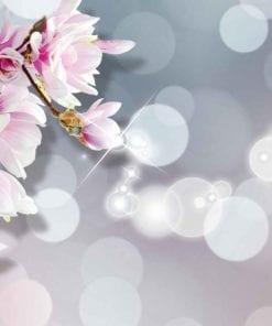 Fototapet med motivet: Blomma Cirkel Design