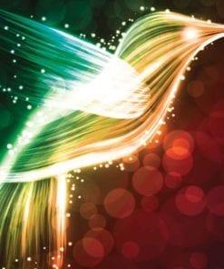 Fototapet med motivet: Bird kolibri neonfärger