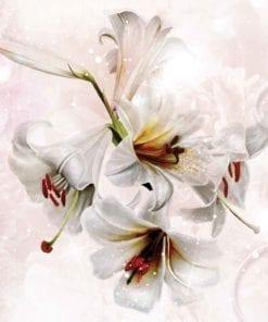 Fototapet med motivet: Blomma Liljor bubblar mönster