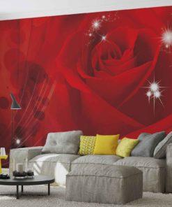 Fototapet med motivet: Blomma Ros Röd