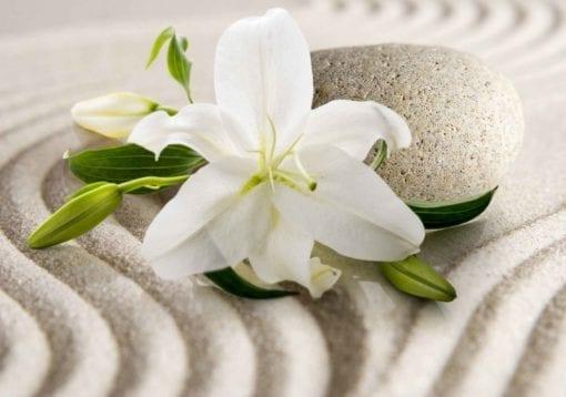 Fototapet med motivet: Blomma Sand
