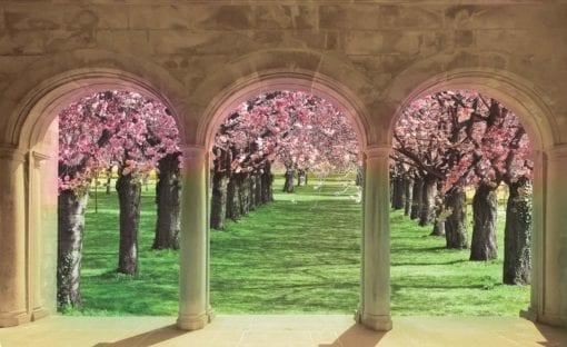 Fototapet med motivet: Blommande träd genom valvet
