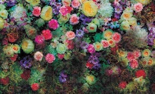 Fototapet med motivet: Blommor Färger Design