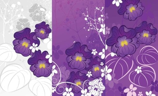 Fototapet med motivet: Blommor Lila Natur