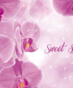 Fototapet med motivet: Blommor Orkidéer Rosa