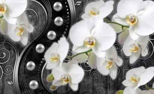 Fototapet med motivet: Blommor Orkidéer design