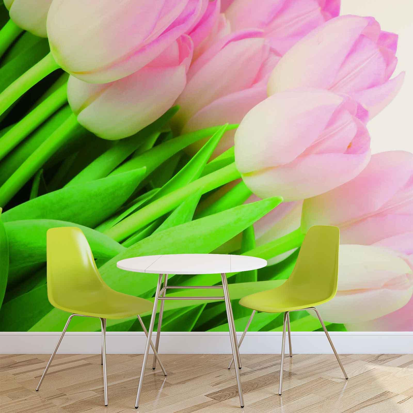 Fototapet med motivet: Blommor Tulpaner Natur