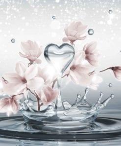 Fototapet med motivet: Blommor Vattendroppar Hjärta