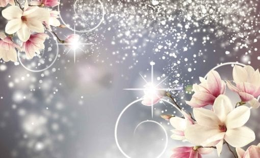 Fototapet med motivet: Blommor abstrakt Diamanter