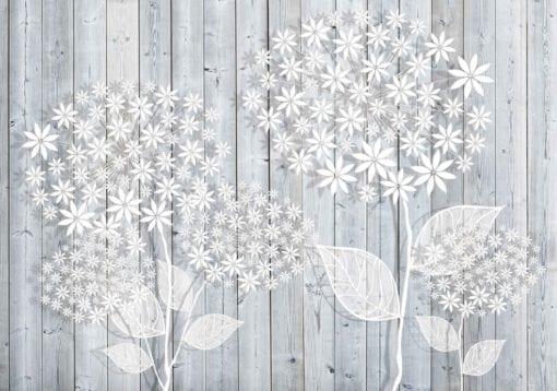 Fototapet med motivet: Blommor grå bakgrund