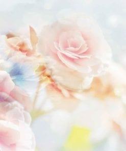 Fototapet med motivet: Blommor pastellfärger