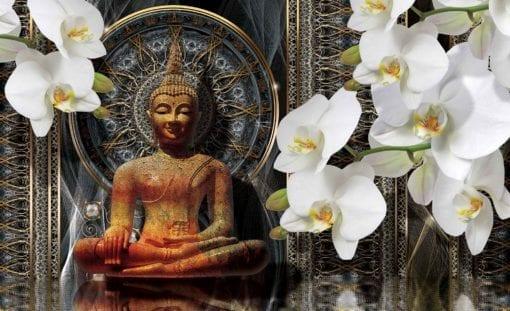Fototapet med motivet: Buddha Zen Blommor Orkidéer Mandala