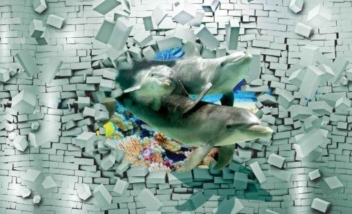 Fototapet med motivet: Delfiner Koraller Tegelsten