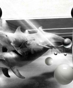 Fototapet med motivet: Delfiner sfärer