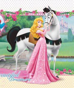 Fototapet med motivet: Disney Princesses Aurora Prinsessor