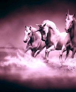 Fototapet med motivet: Enhörningar hästar Lila Svart
