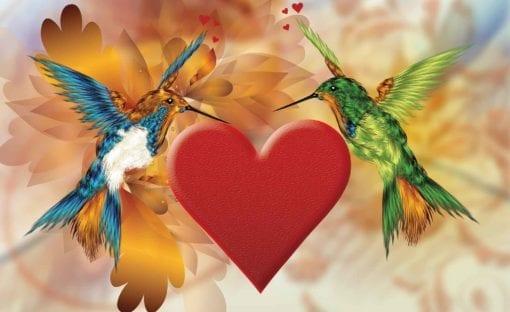 Fototapet med motivet: Fåglar Kolibri Hjärta Blommor
