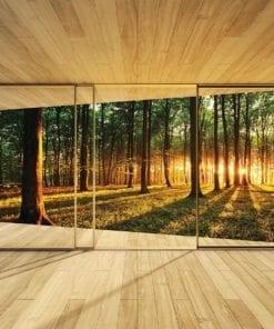 Fototapet med motivet: Fönster Skog Träd Ljusstråle Natur
