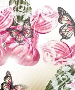 Fototapet med motivet: Fjärilar Blommor