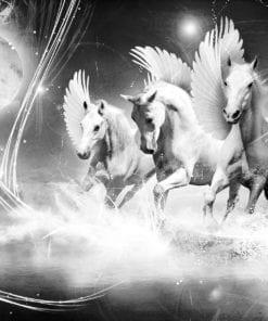 Fototapet med motivet: Hästen Pegasus Svart