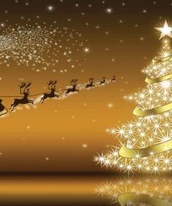 Fototapet med motivet: Julgran jultomten
