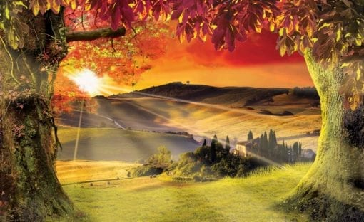 Fototapet med motivet: Landskap Italian Solnedgång