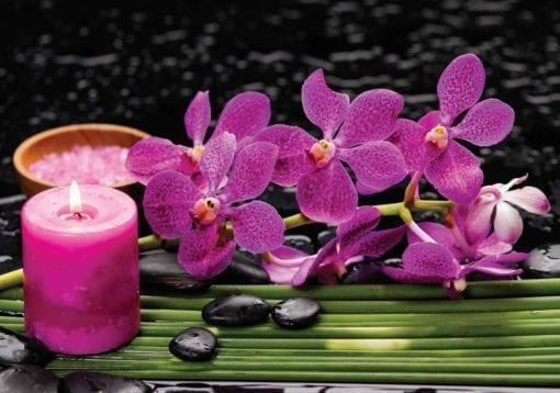 Fototapet med motivet: Lila Orkidéer och ljus