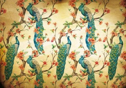 Fototapet med motivet: Mönster Påfåglar Blommor Vintage