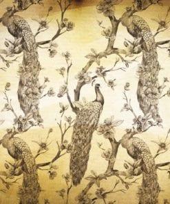 Fototapet med motivet: Mönster Påfåglar blommor Vintage Sepia