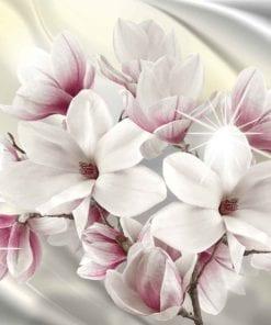 Fototapet med motivet: Magnoliablommor